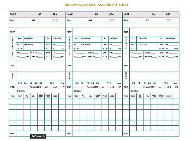 TheCleverGypsy NICU Assignment/Report Sheet aka Shift Brain