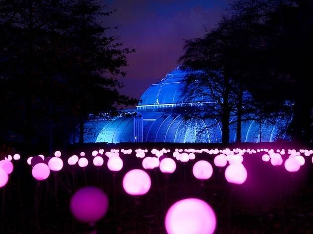 Christmas at Kew Gardens | Kew Gardens | Things to do in London
