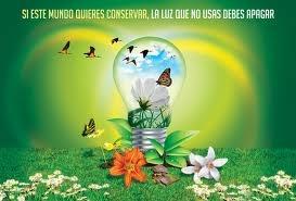 Inspirados en esta idea surge el JURAMENTO AMBIENTAL, que será la instancia en la cual los niños jurarán proteger el medio ambiente, sus recursos naturales y todas las formas de vida manifiestas en la Tierra.