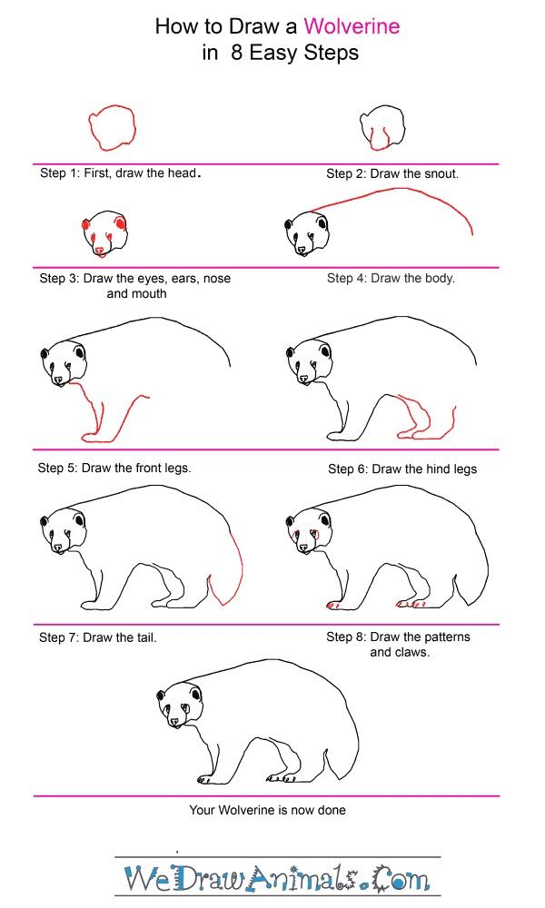 how to draw a wolverine step by step tutorial