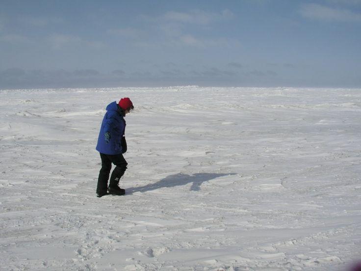 snow - Ice-Blog - DW.COM