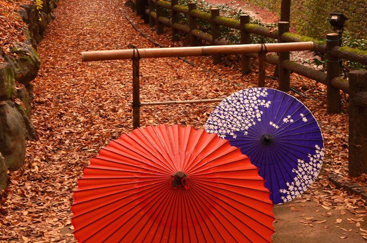 和傘。和紙に油を塗っているために水を弾くようになっている。
