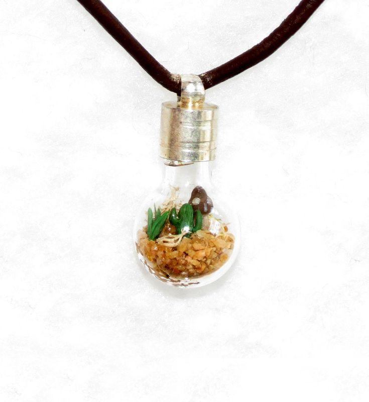 Cactus Terrarium Men's Lost World Mini Terrarium by Hieropice, $27.50