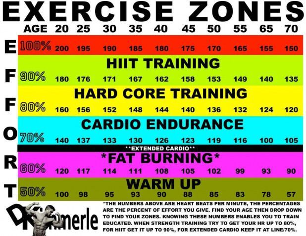 Heart Rate Zones Dk Fatburning Heart Rate Zones Heart Rate