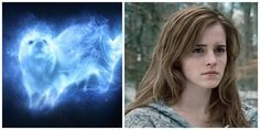 """What's Your Patronus? You got: An Otter You're the """"smart one"""" among your group of friends and you'll do anything for the people you love, even if it means getting into trouble. You're a realist and appreciate a good book filled with knowledge and facts. Your Patronus takes the form of an otter, the same as Hermione Granger. 10 points for Gryffindor!"""