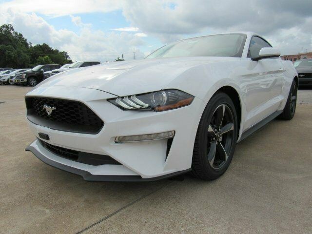 Ebay Advertisement 2019 Mustang Ecoboost 2019 Ford Mustang Ecoboost 2276 Miles Oxford White 2dr Car Intercool Ford Mustang Ecoboost Mustang Ecoboost Car Ford