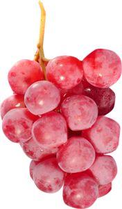 vitamin e fruits fruits basket gif