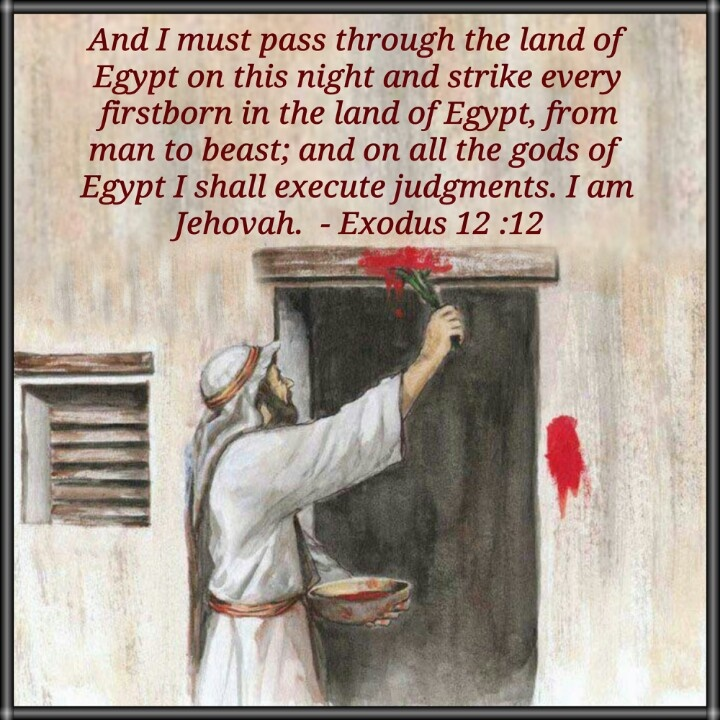Jehovah making his name known to the Egyptians. - the pass over. Each plague was against a different egyptian god, showing them powerless against Jehovah.: