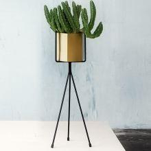 die besten 17 ideen zu indoor pflanzenst nder auf pinterest pflanzenst nder pflanzenhalter. Black Bedroom Furniture Sets. Home Design Ideas