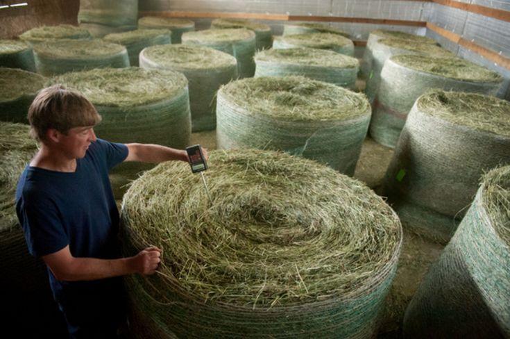 Eureka Cropping Center — Jasper Hill Farm