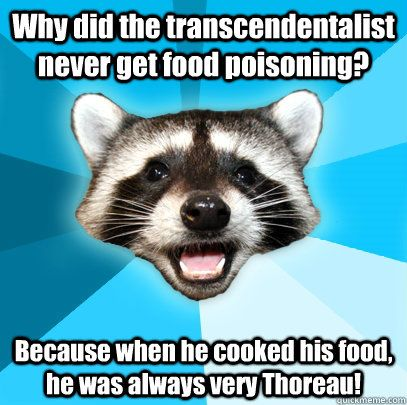 I don't get what transcendentalism is...PLEASE HELP!!?