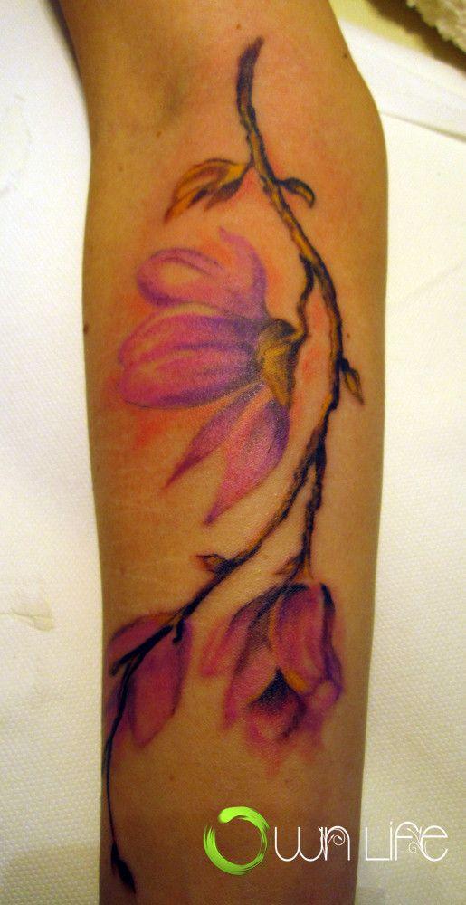 die besten 25 magnolien tattoo ideen auf pinterest magnolienbl te blumen fu tattoo und. Black Bedroom Furniture Sets. Home Design Ideas