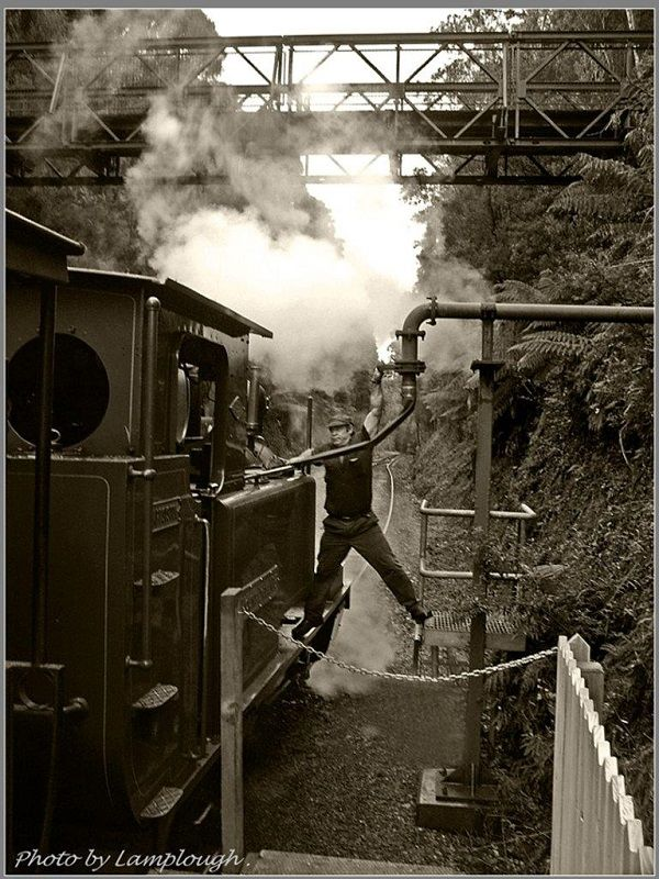 West Coast Wilderness Railroad ~ photo by David Lamplough, article for think-tasmania.com