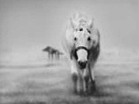 ΘΑΝΑΣΗΣ ΠΑΠΑΚΩΝΣΤΑΝΤΙΝΟΥ - Η ΟΥΡΑ ΤΟΥ ΑΛΟΓΟΥ - YouTube