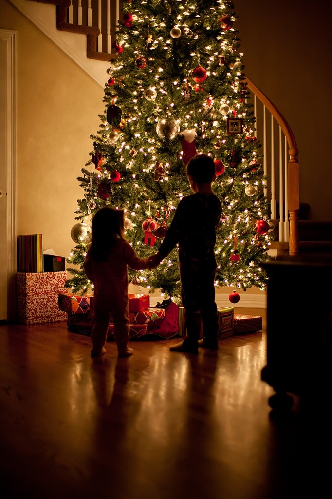 Love this idea for Christmas pictures