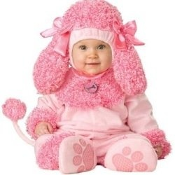 Baby Girl Costumes - Cute Halloween Costumes for Baby Girls: Halloweencostumes, Precious Poodle, Babies, Pink Poodle, Halloween Costumes, Poodle Costume, Infant, Baby Costumes, Baby Girl