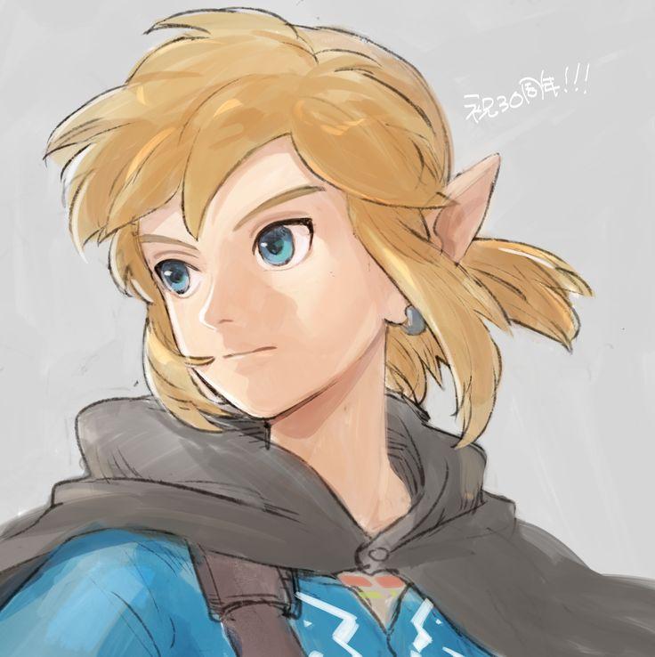 Zelda Wii U by らっきょ @umairakkyo