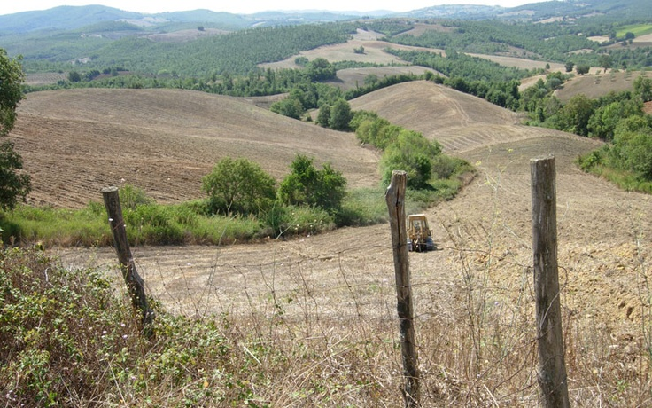 Fattoria La Maliosa – Organic Farming in Tuscany