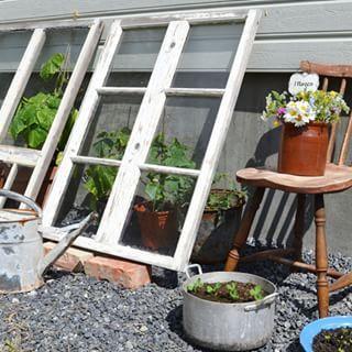 drivhus af gamle vinduer - Google-søgning