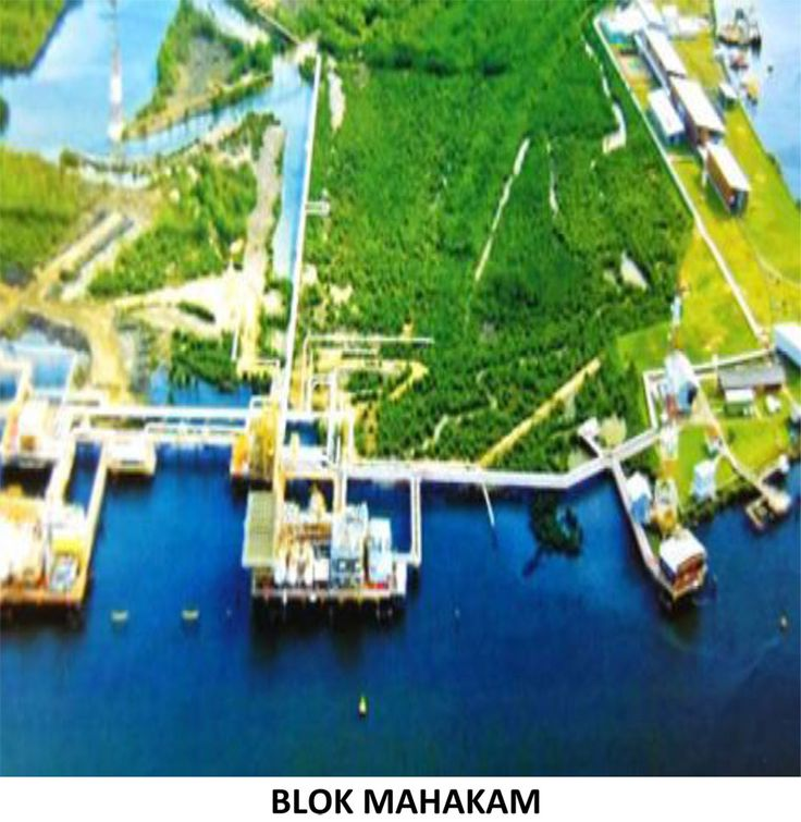 JAKARTA, Plimbi – Pemerintah cq Kementerian Energi dan Sumber Daya Mineral (ESDM) akhirnya memutuskan, mulai 1 Januari 2018 pengelolaan Blok Mahakam diserahkan kepada PT Pertamina (Persero).