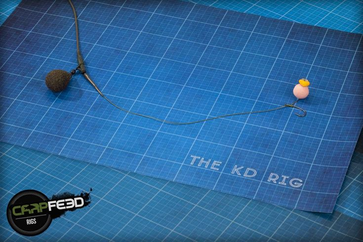KD rig — Carpfeed
