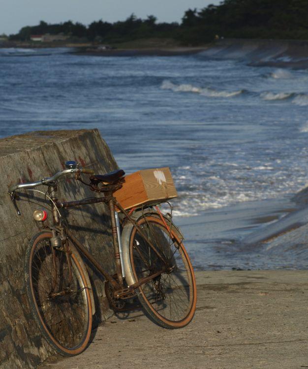 Petite balade à vélo ©Vincent Brun Hannay Ile de Ré
