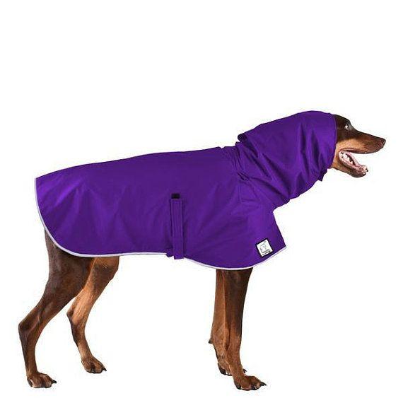 Doberman Pinscher Rain Coat Dog Raincoat Waterproof Dog Coat Spring Jacket For Dogs Windbreaker Doberman Pinscher Waterproof Dog Coats Dog Raincoat