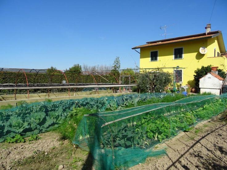 Oltre 25 fantastiche idee su scala da giardino su for Piani casa piccola casetta con portici