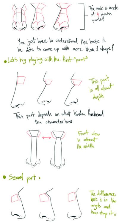 help for drawing noses