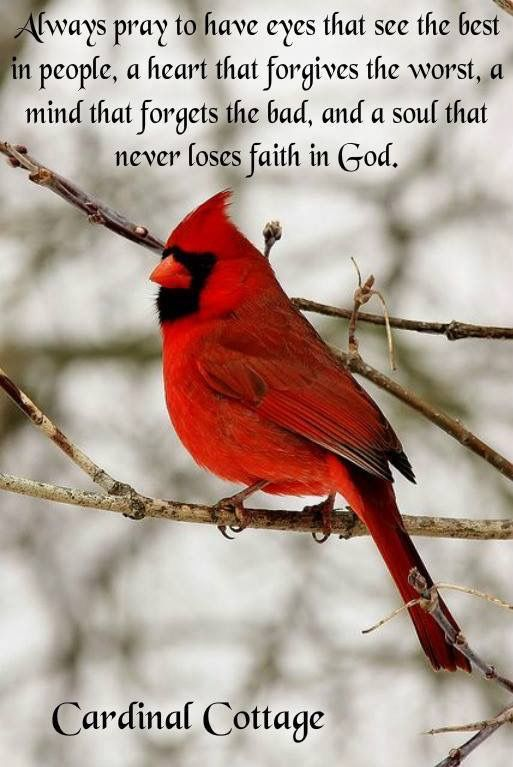 I Miss You My Caleb B Caleb Our Messages Cardinals Sayings Prayers