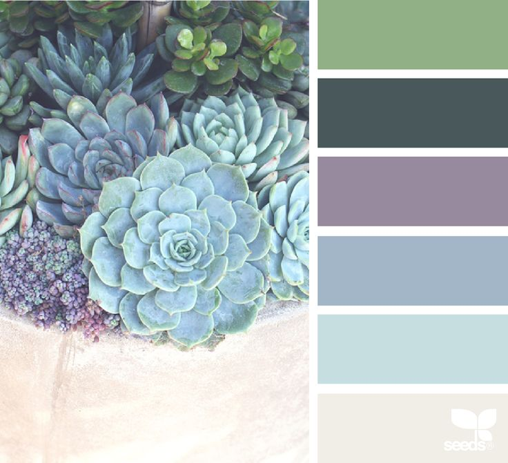 succulent hues living room colorscalming - Bedroom Design And Color