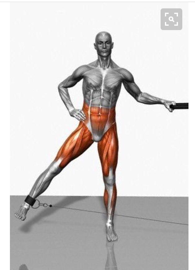 Musculos que sé trabajan con este ejercicio