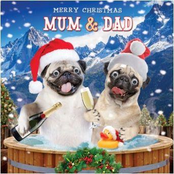 Pug Christmas cards now HALF price at www.ilovepugs.co.uk post worldwide