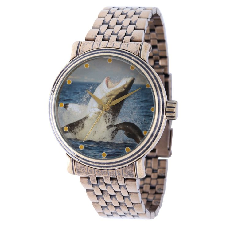 Men's Discovery Channel Shark Week Antique Gold Vintage Alloy Watch - Gold