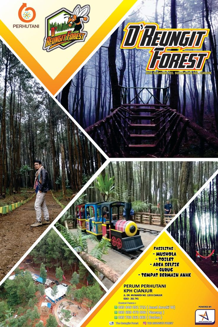 D' Reungit Forest Liburan, Tempat, Alam