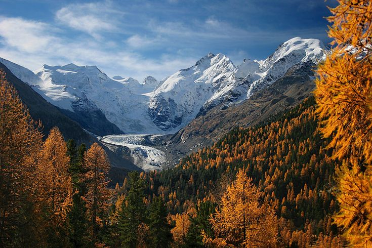 Piz Bernina (one of the few four thousanders in the Alps) and its snowy caps behind the colors of October. (photo by Tan Yilmaz)
