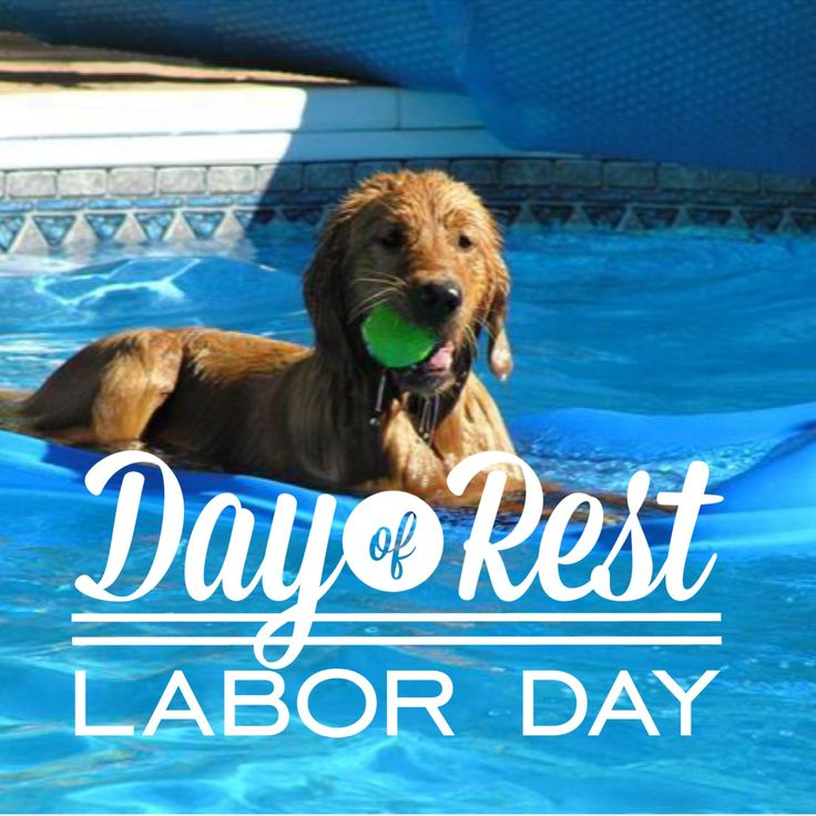 Happy Labor Day! We are open till 3pm today! - http://bit.ly/1hQgXdh