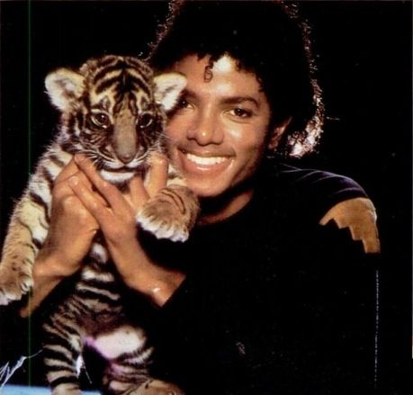 Michael Jackson with tiger ❤