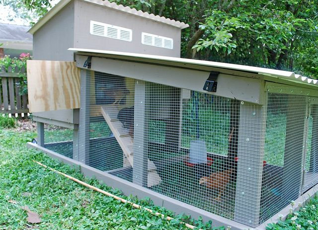 chicken coop - just a picture