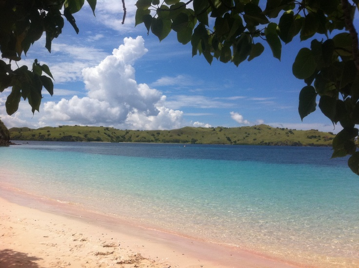 Pink Beach, Pulau Komodo, Flores