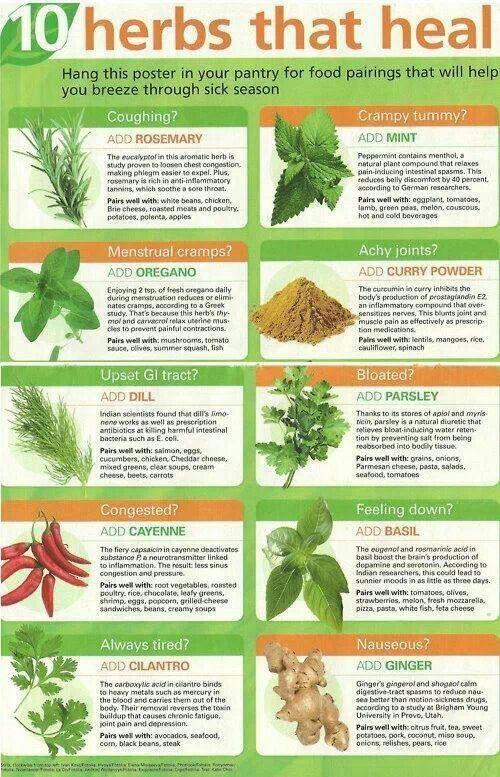 20 best Food Informa