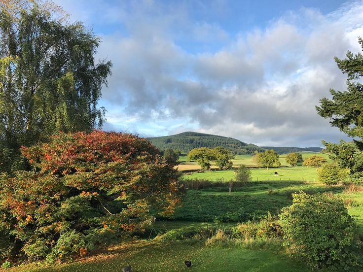 Our view looking beautifully autumnal | there really are few places more beautiful than the English countryside in autumn | #autumn #shropshire #countryside #landscape