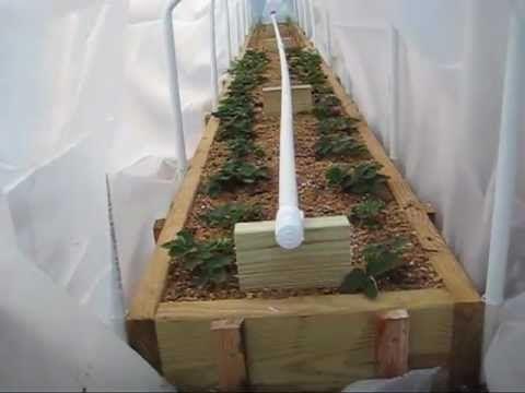 Mittleider Garden: 20+ videos on setting up the garden for this method
