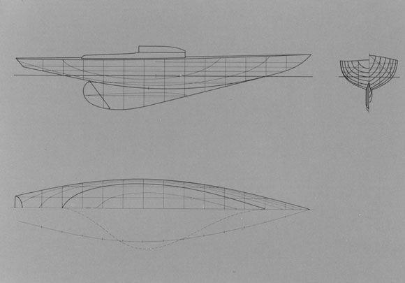Requin. Plan de formes
