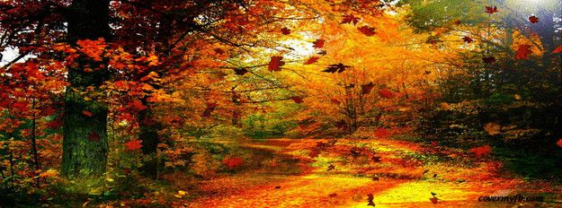 Mac Pro Fall Wallpaper 2017 Autumn Facebook Covers For Facebook Leaves Fall