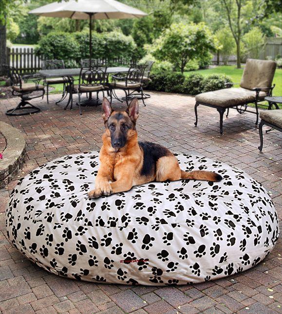 Dog Beds Large COVER ONLY! Bean bag dog bed, Dog bean