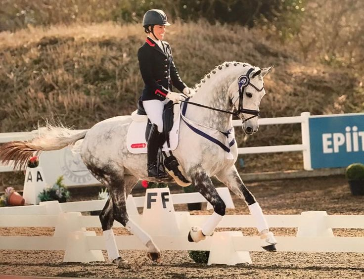 """Bentley and I stole the blue at my he dressage show today! I'm so proud of him he's such a great horse!"""""""
