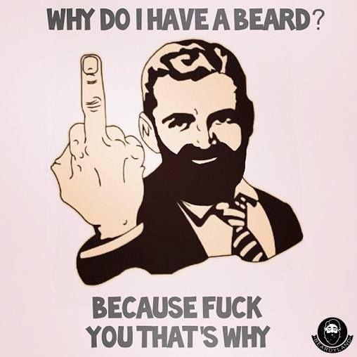 Why do I have a beard? Because fuck you, thats why. Bearded beards humor Check out Dieting Digest