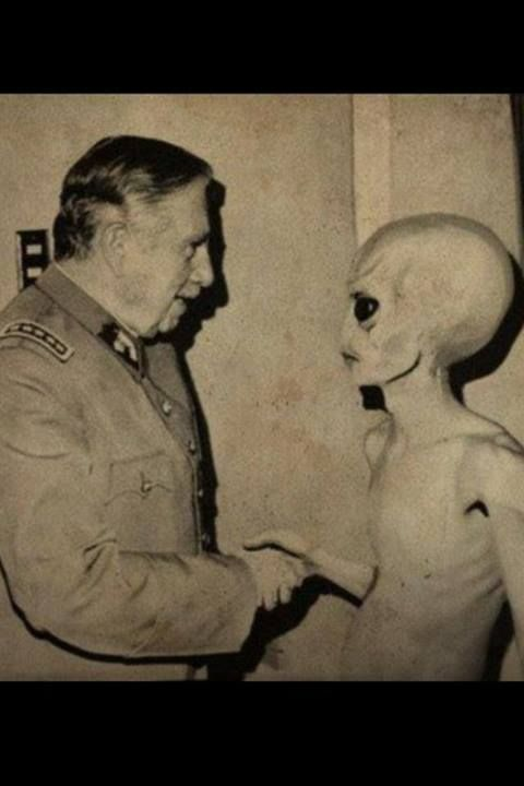 I don't know if this is true, the fact I know the pleiadians or the creature on the right, we will be in a new world order and can become Godly but not by the fucking ignorant UFO's (the good ones can't come because they contain too much radiation by force now we have to become ecological because we are killing the planet, sign this, https://www.youtube.com/watch?v=XClI8FGMVa4: