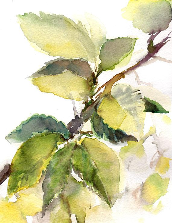 Green Leaves Watercolor Painting, Original Watercolor Painting Leaves Watercolour Art One of a Kind Art Watercolour Art Size: Painting: 8x10.3 (20x26 cm) Paper: 8.5x11 (21.5x28 cm) Medium: top branded watercolor paints on Strathmore water color paper 140 lb (300g) Signed front and back